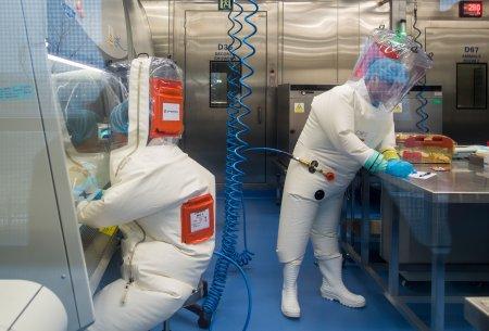Pandemiyadan əvvəl ABŞ və Çində koronaviruslar hazırlanıb